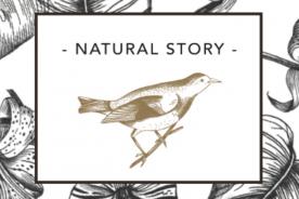 Kerstpakket met het thema Natural Story